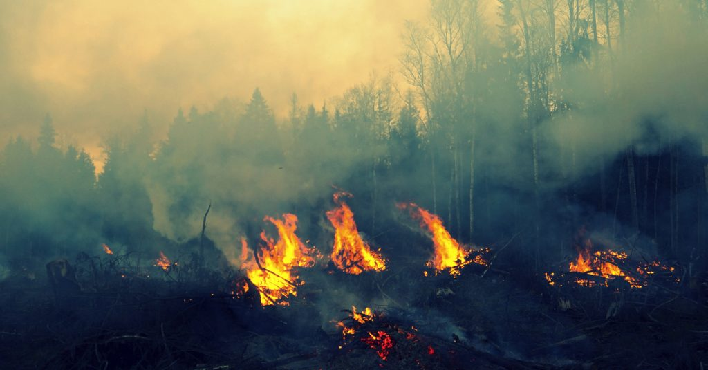 shutterstock-forest-fire